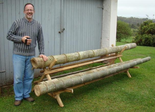 Cultivo bambu cultivo bambu with cultivo bambu excellent with cultivo bambu best visite os - Cultivo del bambu ...